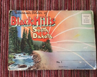 South Dakota,Black Hills,South Dakota Ephemera,Retro Postcard,40s Postcard,South Dakota Memorabilia,Mount Rushmore Postcard,Dakota,Post Card
