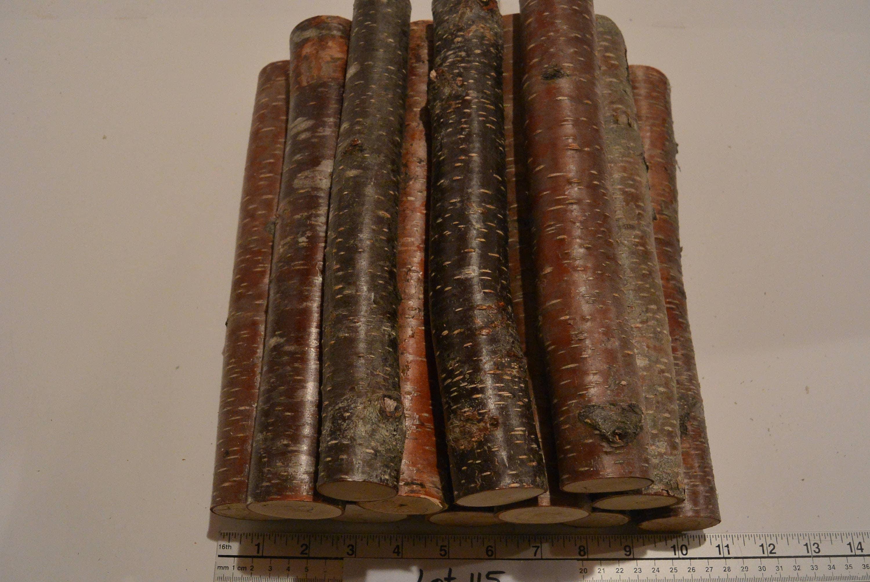 12 fireplace logs fire wood logs lot 115 birch logs rustic