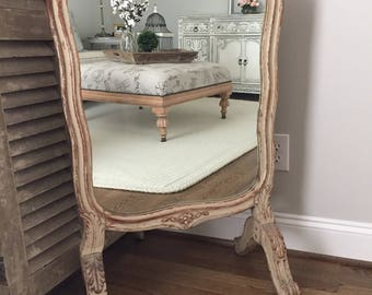 Antique French Ornate Fireplace Screen Mirror