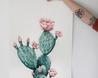 Desert Flower - Art Print