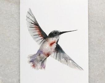 Watercolor 5x7 print hummingbird
