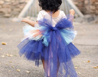 Autumn Beauty - Long Tutu In Blue And Peach