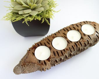 Rustic centrepiece - rustic candle holder, wooden candle holder, nature inspired, australian made, tealight holder housewarming gift,banksia