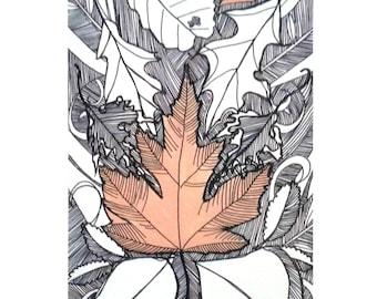 "Daylesford Autumn Leaves - Limited Edition Digital Print 5x7"""