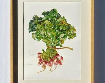 radish print - from the original artist painting