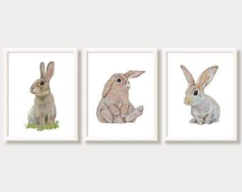 Bunny Art Bunny Print  Rabbit Art Rabbit Print Bunny Watercolor Painting Set of 3 Prints Bunny Nursery Decor Bunnies Poster Nursery Wall Art