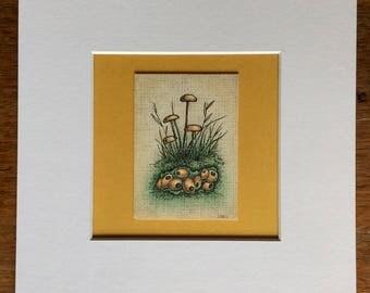 gold fungi