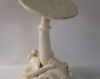 Tipsy fungi