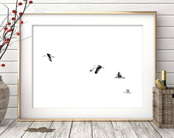 Seagull Print, Minimalist Print, Seagull Art, Minimalist, Wall Art, Digital Print, Minimalist Printable Art, Wall Art Print, Black and White