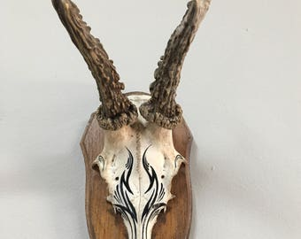 Roe Deer Skull mounted with Rock/Tribal black design painted jewellery stand