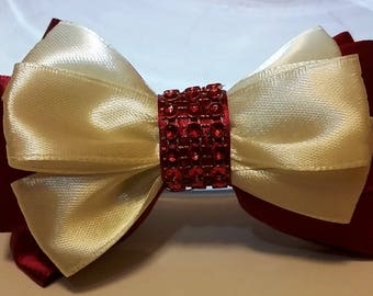 "4"" Unique Beautiful Hair Bow"