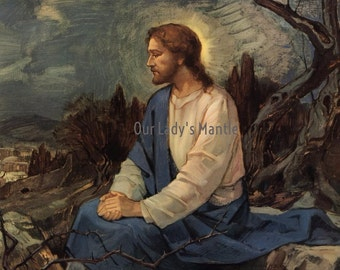 CHRIST on Mount of Olives Overooking Jerusalem 10x8 Religious Print Picture Art Printed in USA