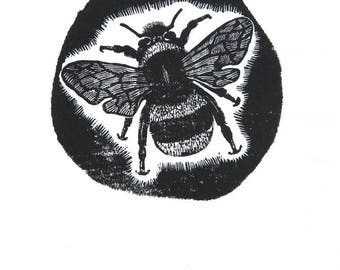Print of Bumble bee, Bombus Terrestris, wood engraving, bee print, black and white print, insect print