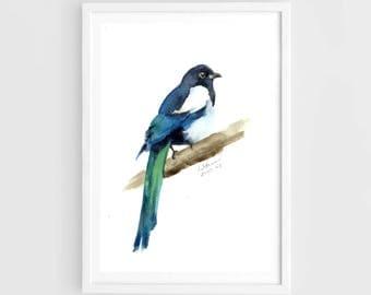 "Original painting,watercolor bird, black-billed magpie, 7""x9""4(18x24cm),home decor"