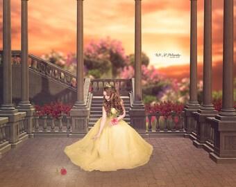 Belle Digital Background