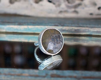 Ammonite ring, fossil ring, unusual ring, unique jewellery, UK size X ring, US size 11 1/2 ring, No. 26 size ring