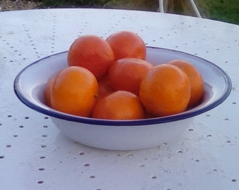 French vintage enamelware bowl
