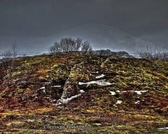 Iceland Thingvellir IV Photographic Art