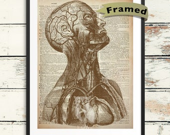 Human Head Dictionary Art - Framed Human Anatomy on Dictionary Page Print. Vintage Anatomy Ready to Hang Framed Giclee