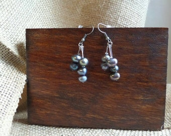 Blue/purple stone beaded earrings