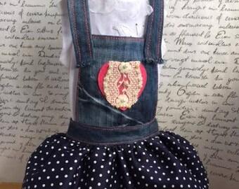 XXL Jeans, Denim dress for dog, Sarafan