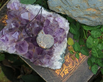 Ammonite Rustic pendant
