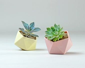 Tilted Icosahedron Geometric Ceramic Pot