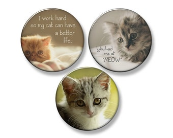 "CATS & KITTENS Fridge Magnet Set - 3 Large 2.25"" Round Magnets (Set #2)"
