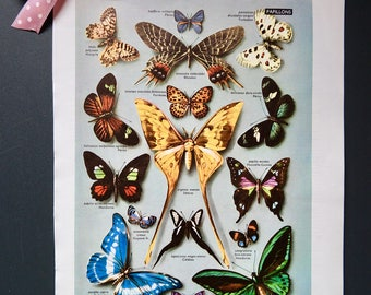 Butterflies picture animal vintage french dictionary craft diy project french antique paper scrapbooking supplies decor poster customization