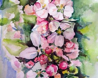 Download digital art print Apple blossom, printable art, watercolor floral painting, wall art print, watercolor flowers, botanical print