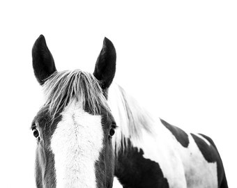 Canvas Horse Print // Baby Room // Nursery Wall Art // Minimal Art // Animal Print // Black and White Photo // Contemporary Western Art