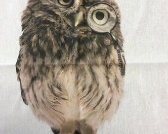 Wise Owl Teatowel