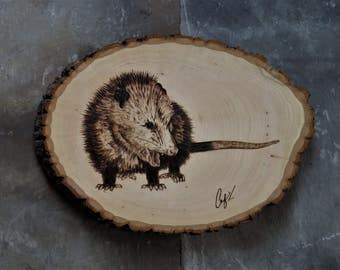 Wood-Burning: Hissing Opossum