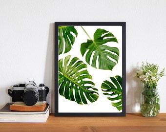 Monstera Leaf Files Download, Monstera Leaf art print - Tropical Print
