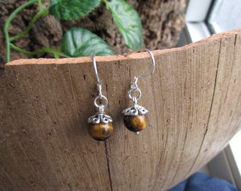 Earrings with Tiger eye