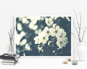 Printable Fine Art Photography, Nature Photography, Printable Wall Art, Cherry Blossom Photography, Cherry Photography, Spring Printable