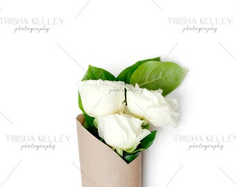 SET OF TWO: Roses on White Background