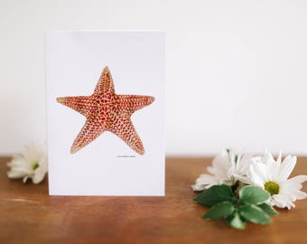 Sea Star Greeting Card and Note Card