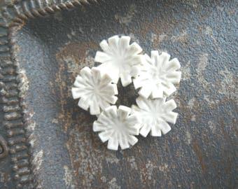 Flower broach [a Martian successor nadesico?