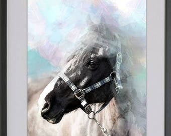 Equine Water Colour