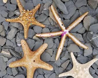 Enchanting upcycled Star Fish. Set of Three.