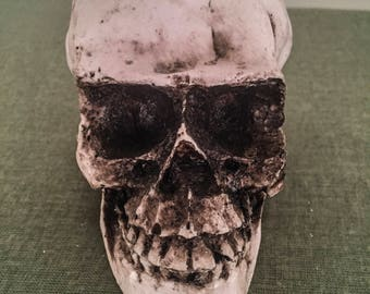 Hand Made Realistic Skull