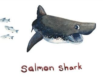 Salmon shark greeting card, A6, watercolor, print, ocean art, nautical, holiday, gift, science, sea, ocean