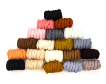 SALE All Creatures Great & Small Merino Variety Pack - 20 Colors - 25 grams each color = 17.6 oz total to Spin, Felt, Card, Create Fiber Art