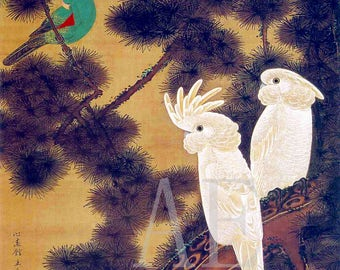 PR-195 Artistic Ephemera Print ~ One 8x10 or Two 5x7s ~ Ancient Japanese Ito Jakuchu - Exotic Parrots in Pines