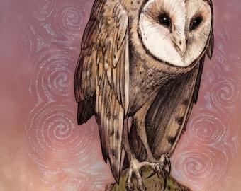 DRUID OWL ※ Barn Owl Mistletoe Acorn Oak Ireland Tree Leaves Fern Moon Stars Spirals Art
