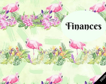 B6 Insert Cover Printable Digital Download Only Flamingoes Finances