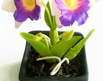 Miniature Polymer Clay Flowers Supplies Tropical Orchids, Cattleya