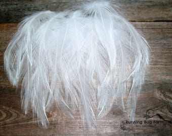 White Feathers Craft Supplies White Craft Feathers Cruelty Free Natural Bird Feathers Hackle Feathers For Crafts Wedding Jewelry Qty20 / WW9