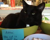 Custom Listing for Cat [6/0 Japanese Seed Beads - Silver-Lined Olivine AB 650, 250 Gram Bag]